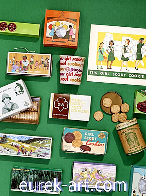 Collector's Guide to Girl Scouts Memorabilia-antikviteter och samlarföremål