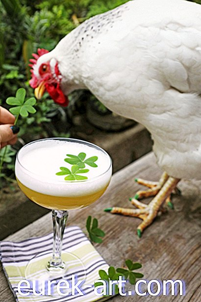 Clover Whiskey Sour