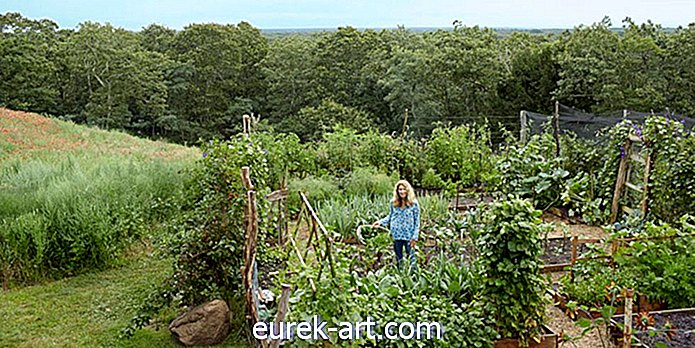 Tour denne fantastiske Martha's Vineyard Home and Garden