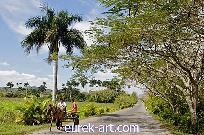 perjalanan - Discover Viñales, A Country Gem In The Heart of Cuba