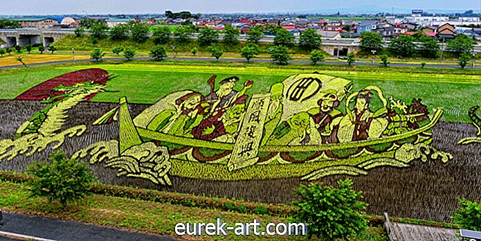 perjalanan - Ini Seni Rice Field Is Way Cooler Than Any Maze Design Maze We Have Ever Seen